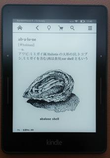 151207_Kindle_3.jpg